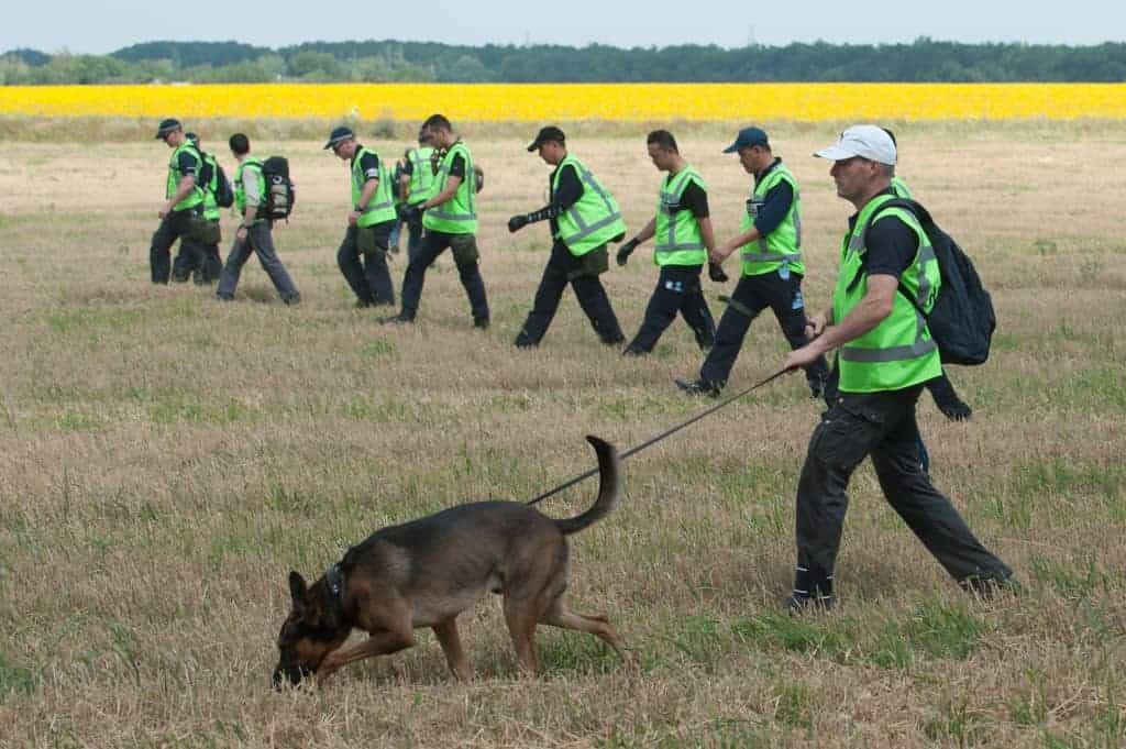 OSCE Foreign experts searching the body parts at the crash side of Malaysian airlines MH-17 near the will age of Rossipne, Eastern Ukraine 5 August 2014.